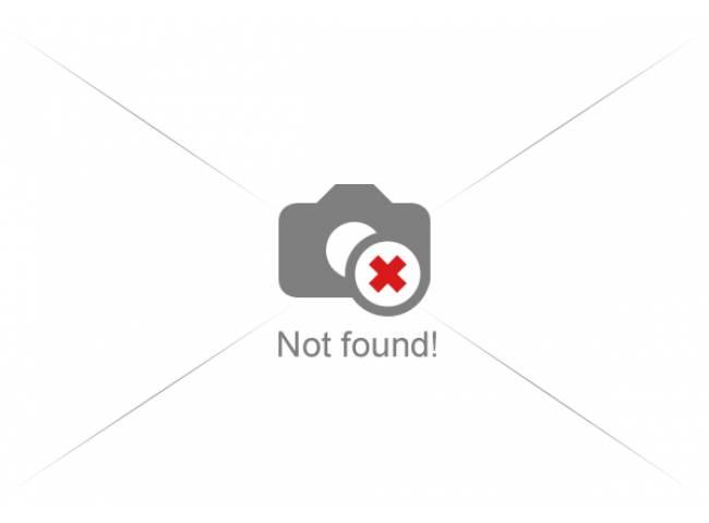 iBoxer